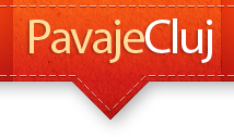 Montaj profesional Pavaje Cluj
